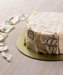 IMG_6008 copy Alice cake